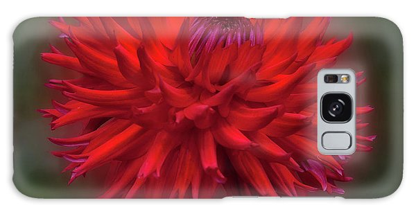 Dahlia 'hollyhill Miss Scarlet' Galaxy Case
