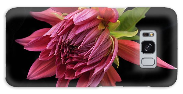 Dahlia 'wynn's King Salmon' Galaxy Case