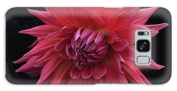 Dahlia 'wyn's King Salmon' Galaxy Case