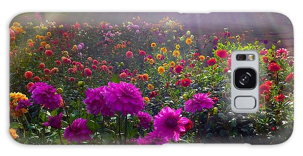 Dahlias Kissed By Sun-rays  Galaxy Case