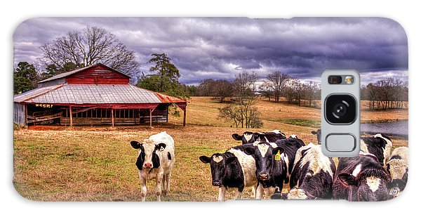 Dairy Heifer Groupies The Red Barn Dairy Farming Art Galaxy Case