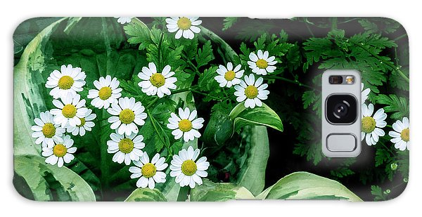 Daisies And Hosta In Colour Galaxy Case