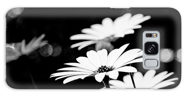 Daisies In Black And White Galaxy Case
