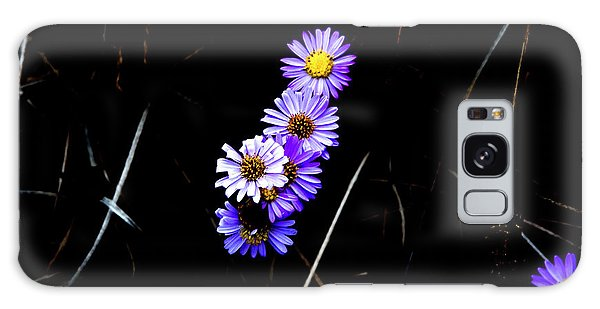 Galaxy Case featuring the photograph Daisies In Purple by Lorraine Devon Wilke
