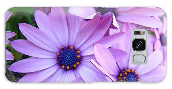 Daisies Lavender Purple Daisy Flowers Baslee Troutman Galaxy S8 Case