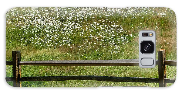 Daisies On The Vineyard Galaxy Case