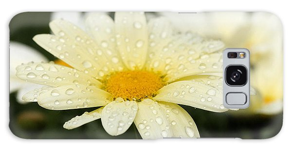 Daisy After Shower Galaxy Case by Angela Rath