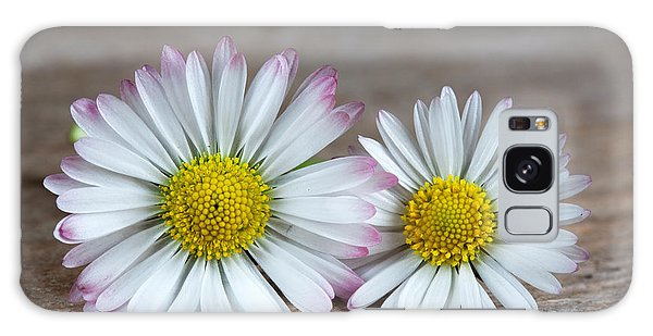 Daisy Galaxy Case - Daisy Flowers by Nailia Schwarz