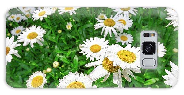 Daisy Garden Galaxy Case