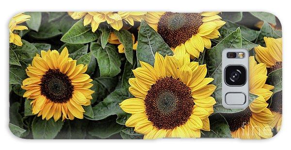 Daisy Yellow  Galaxy Case by Chuck Kuhn
