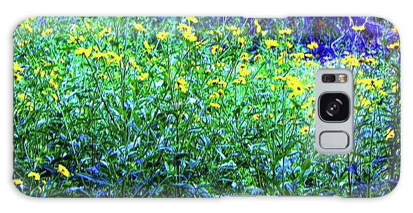 Daisy's In Field Galaxy Case