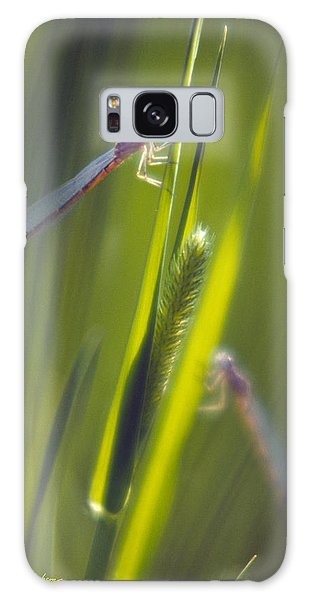Damselflies Galaxy Case