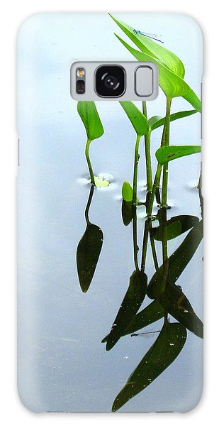 Damselfly In The Mirror Galaxy Case