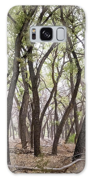 Dance Of The Trees Galaxy Case