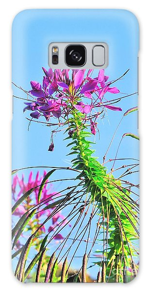 Galaxy Case featuring the photograph Dancing Cleome by Debbie Stahre