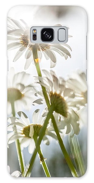 Dancing With Daisies Galaxy Case by Aaron Aldrich