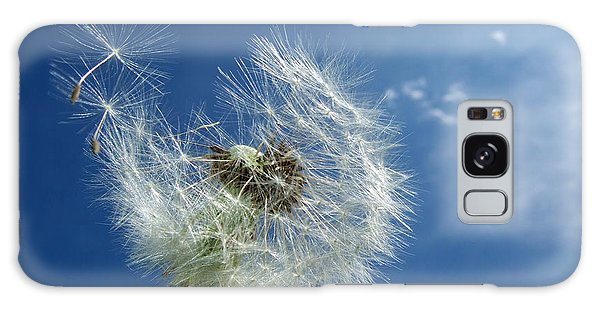 Dandelion And Blue Sky Galaxy Case