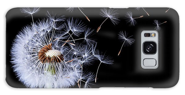 Dandelion Blowing On Black Background Galaxy Case