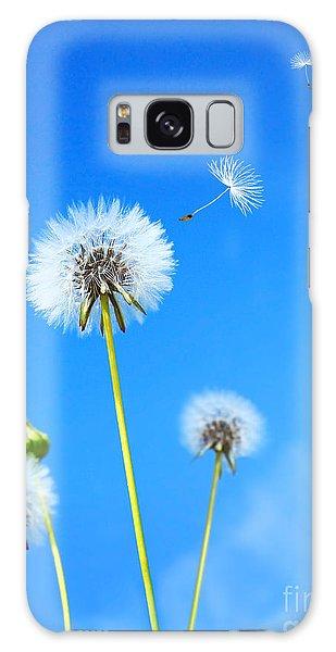 Dandelion Field Galaxy Case
