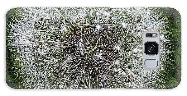 Dandelion Fluff Galaxy Case