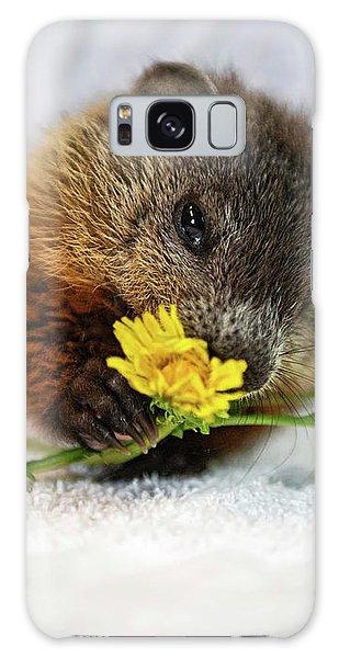Groundhog Galaxy Case - Dandelion Love by Nina Stavlund