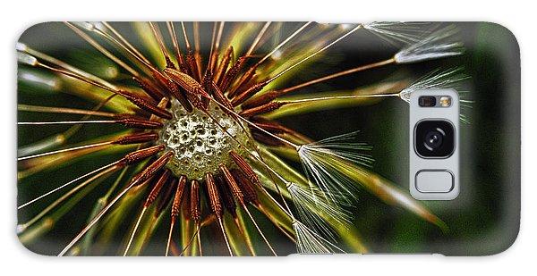 Dandelion Puff Galaxy Case
