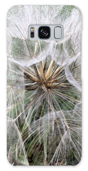 Dandelion Seed Head  Galaxy Case