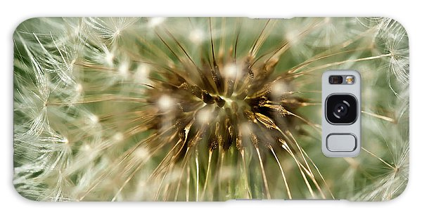 Dandelion Seed Head Galaxy Case