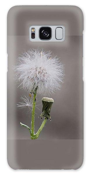 Dandelion Seed Head Galaxy Case by Rona Black