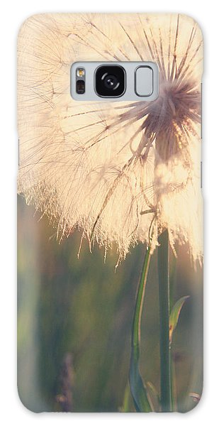 Dandelion Sunshine Galaxy Case