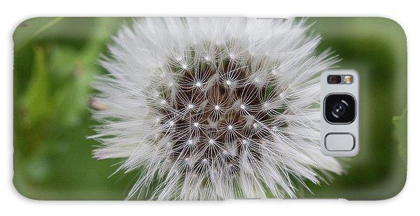 Dandelions Galaxy Case