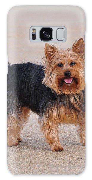 Dapper Dog Galaxy Case