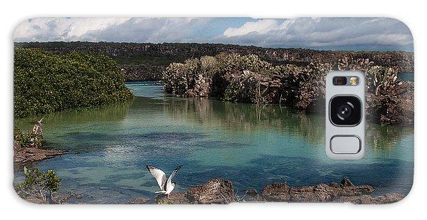 Darwin Bay     Genovesa Island      Galapagos Islands Galaxy Case