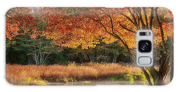 Dawn Lighting Rhode Island Fall Colors Galaxy Case
