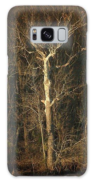 Day Break Tree Galaxy Case
