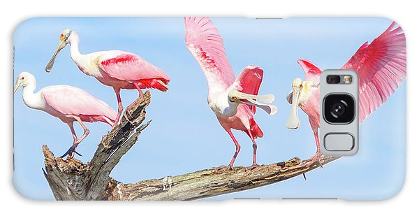 Day Of The Spoonbill  Galaxy Case by Mark Andrew Thomas