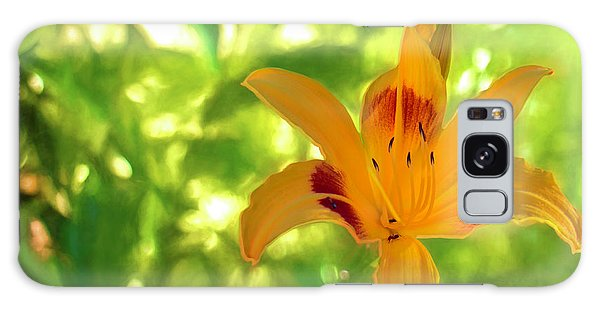 Daylily Galaxy Case by Charles Ables