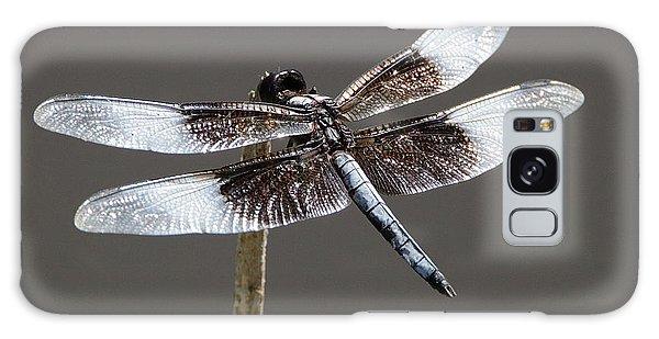 Dazzling Dragonfly Galaxy Case