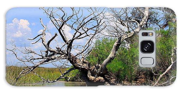 Dead Cedar Tree In Waccasassa Preserve Galaxy Case