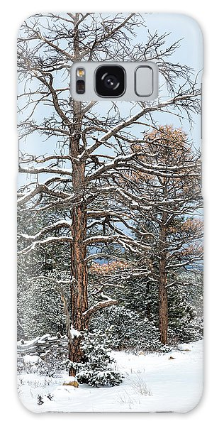 Dead Ponderosa Pines In Winter Galaxy Case