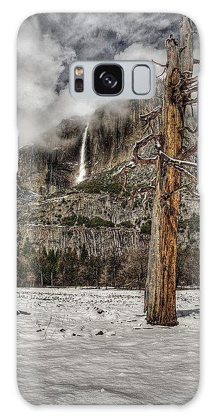 Dead Tree In Yosemite Valley Galaxy Case