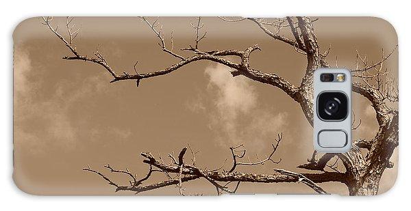 Dead Wood Galaxy Case by Rob Hans