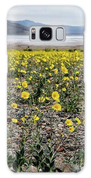 Death Valley Super Bloom Galaxy Case