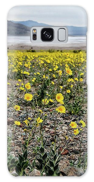 Death Valley Super Bloom Galaxy Case