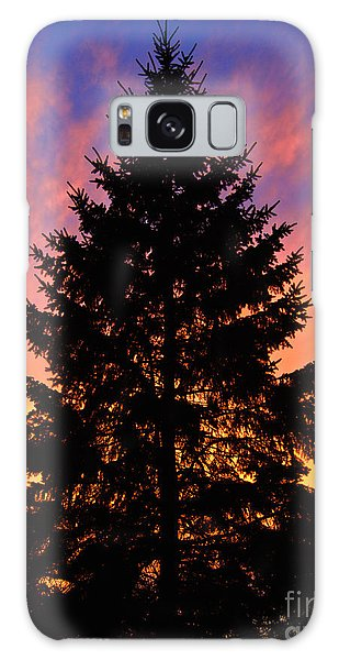 December Sunset Galaxy Case by Mark Miller