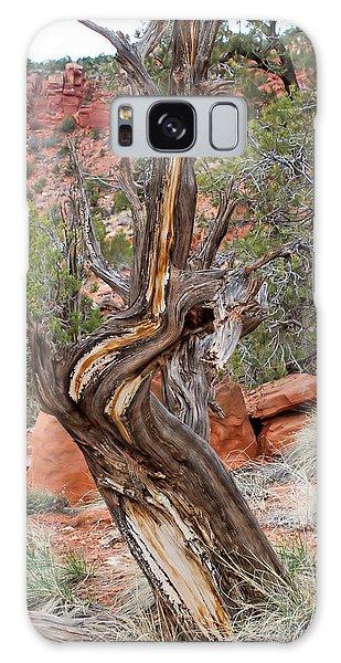 Decorative Dead Tree Galaxy Case