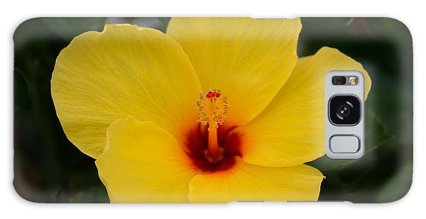 Decorative Floral Photo A9416 Galaxy Case