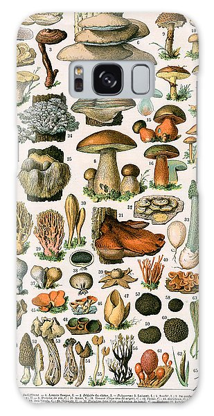 Decorative Print Of Champignons By Demoulin Galaxy Case by American School