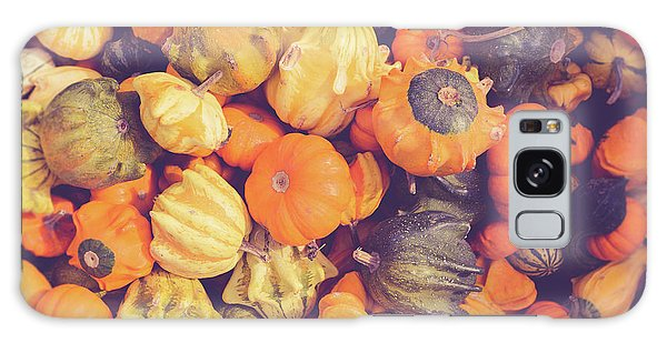 Gourd Galaxy Case - Decorative Squash And Gourds by Edward Fielding