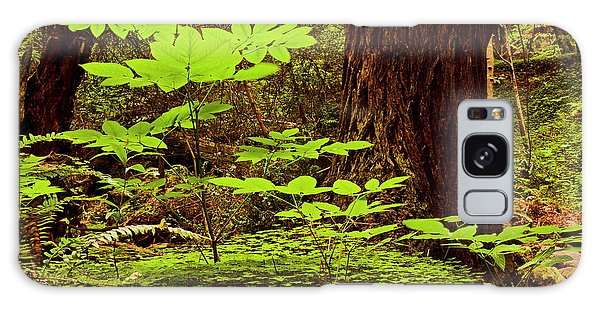 Deep In The Forest-lime Klin Galaxy Case